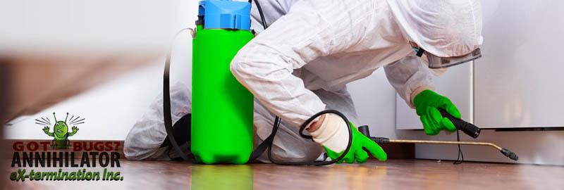 staten island exterminators spraying